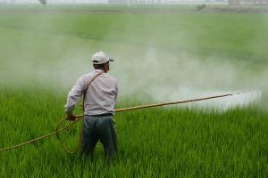 Kerala government bans glyphosate a deadly weed killer