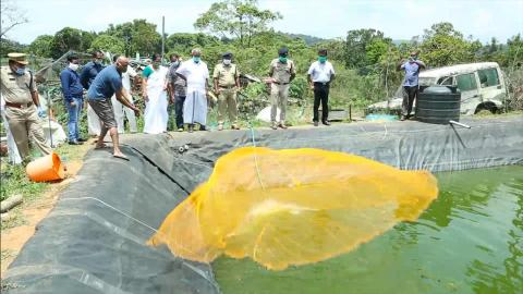 Kerala police station adds fish farm to its flourishing surroundings