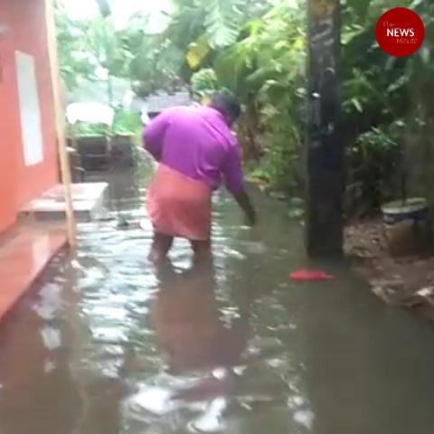 Kochi city inundated after rainfall, heavy downpour continues across Kerala