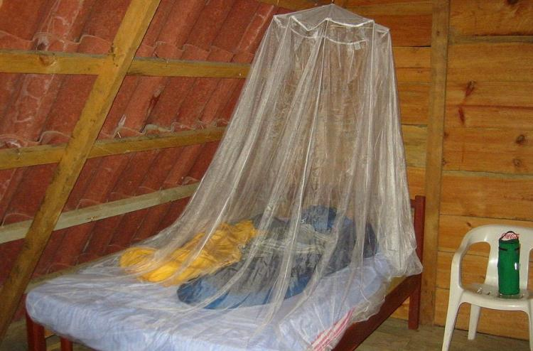 Kerala amateur designs portable mosquito net that can be used as a bed sheet