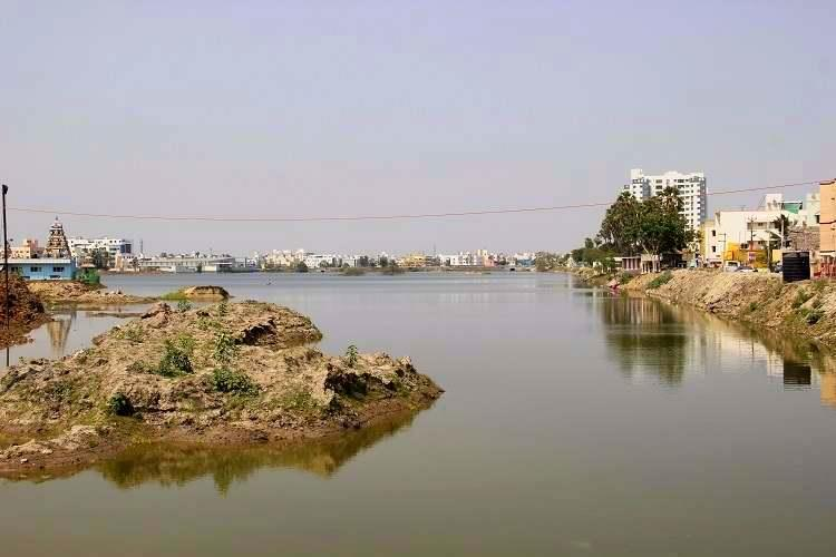 Staying afloat Restoration of Chennai wetland shows theres still hope