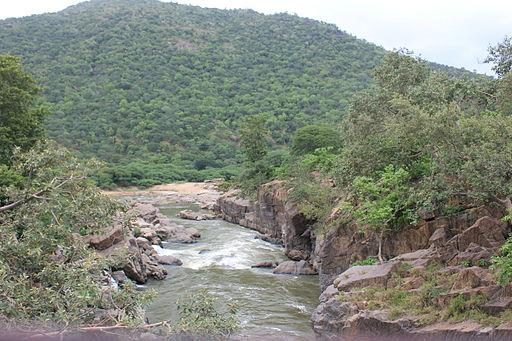 Centre sides with Ktaka on Cauvery cites farm suicides to refuse water to TN