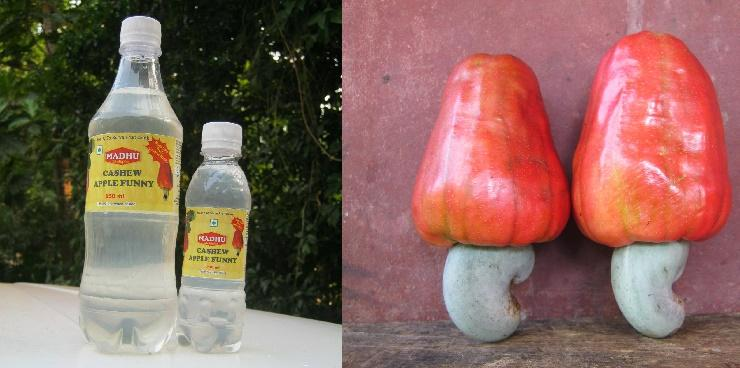 After Fenny the cashew fruit finds its purpose in a Funny drink