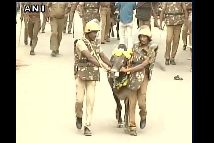 In Jallikattu heartland Madurai supporters face police lathis instead of bulls