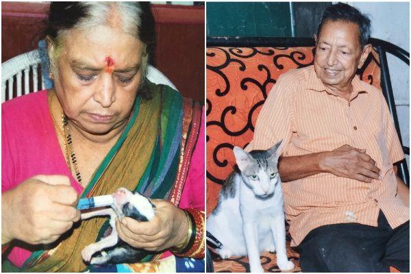 Elderly couple mortgage their house to protect Chennais stray animals you can help them