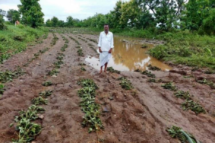 A farmer with corps lost in excess rain