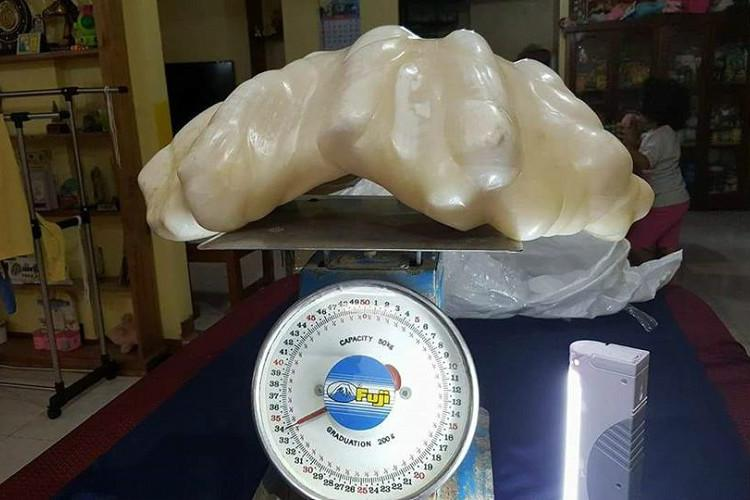 Fisherman kept worlds largest pearl under his bed for 10 years for good luck