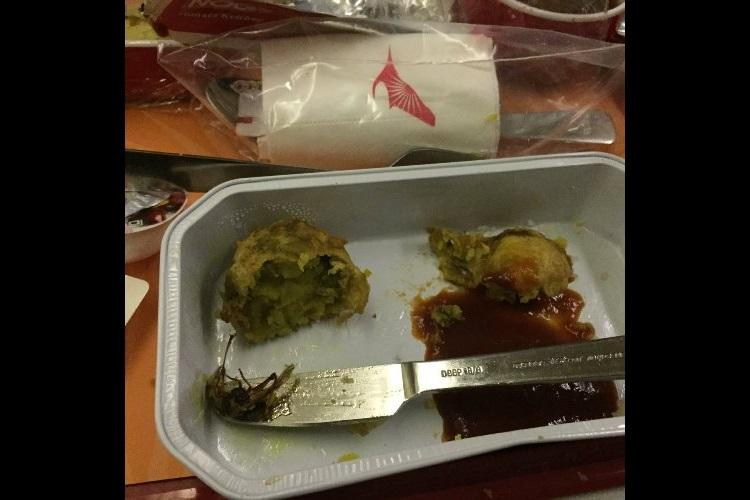 Passenger finds cockroach in Air India meal airline fines caterer