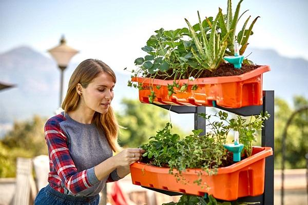 Backyard farms are pass this startups helps you build a farm in your bedroom
