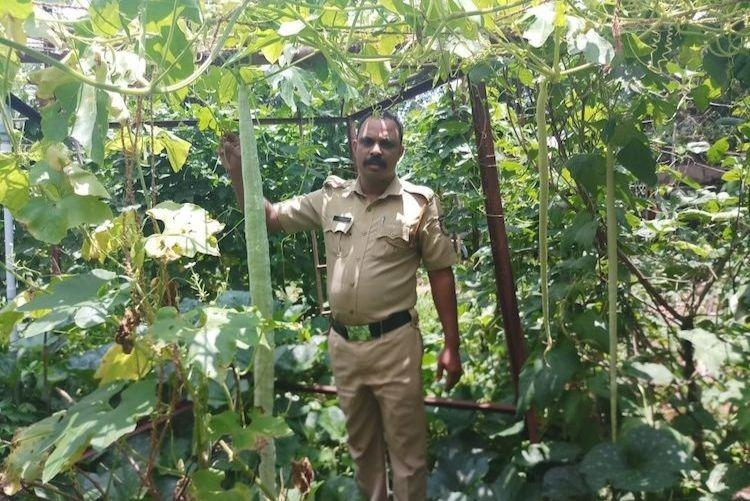 From law and order to farming Kerala cops convert station premises into organic farm