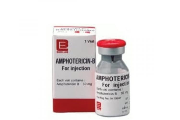 Vial of Amphotericin B used to treat black fungus