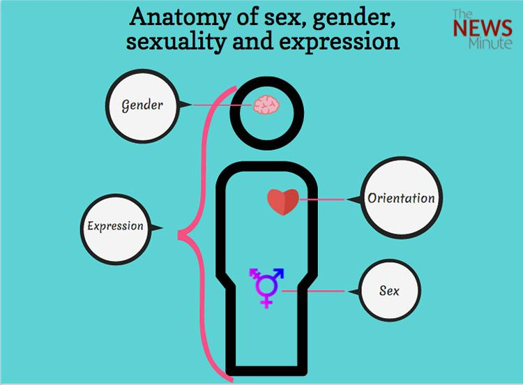 Different ways of expressing sexuality