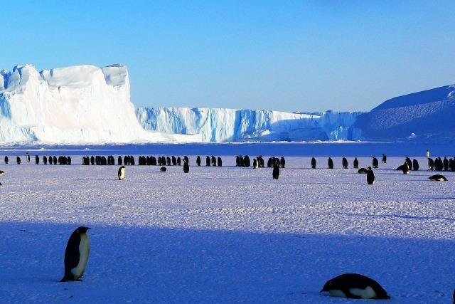 Antarctica may not be as isolated as we thought and thats a worry