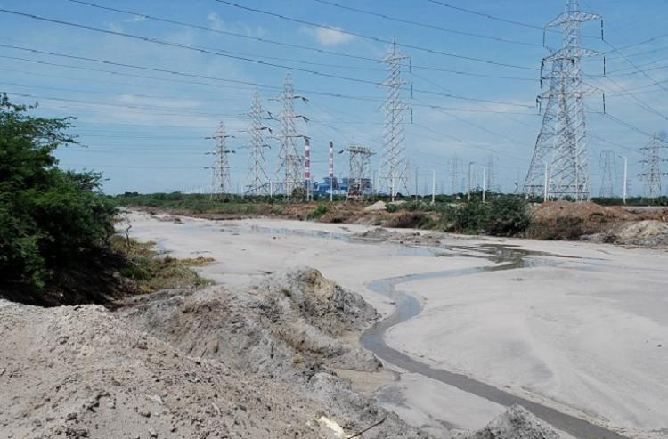 Dirty water and toxic fish Panel finds Ennore Creek severely polluted by fly ash
