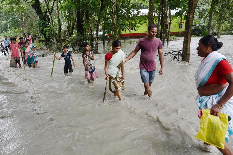 Assam floods 11 dead lakhs of people and animals displaced