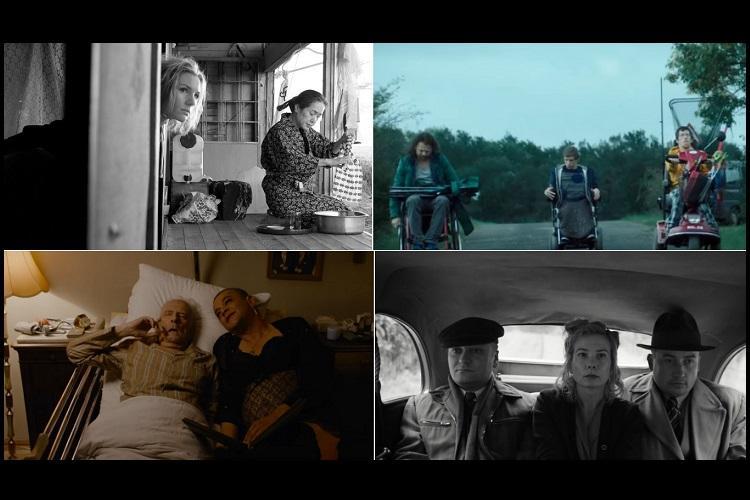 The worlds my oyster Snapshots of poignant cinema from the Bluru International Film Fest