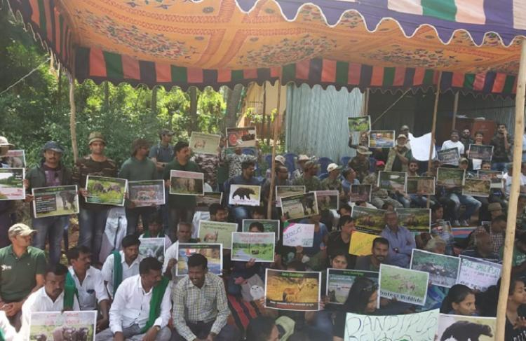 Kerala CMs push for Bandipur elevated corridor irks environmentalists in both states