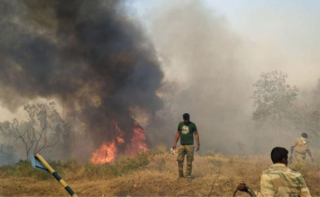 Major fire breaks out at Bandipur Tiger Reserve hundreds of acres destroyed