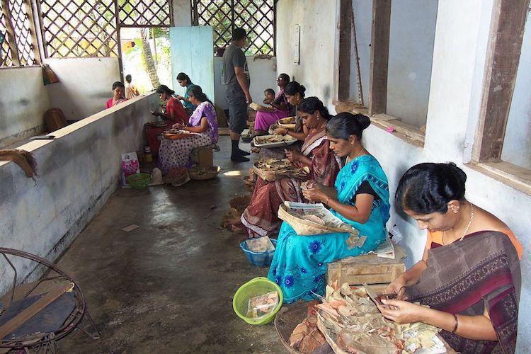 Kerala govt sanctions Rs 20 crore for rehabilitating beedi workers