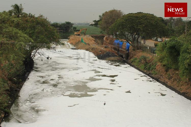 No one wants Bellandur Lake Bluru agency requests Army to clean up the lake
