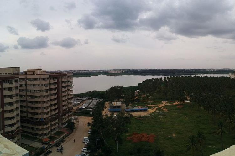 Bellandur Lake Bengaluru