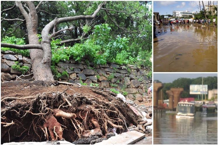 Buffer zones in Bengaluru lakes increase capacity help mitigate floods IISc report