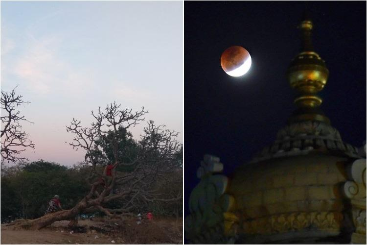 Selfie with the moon The lunar eclipse experience at Bengalurus Lalbagh