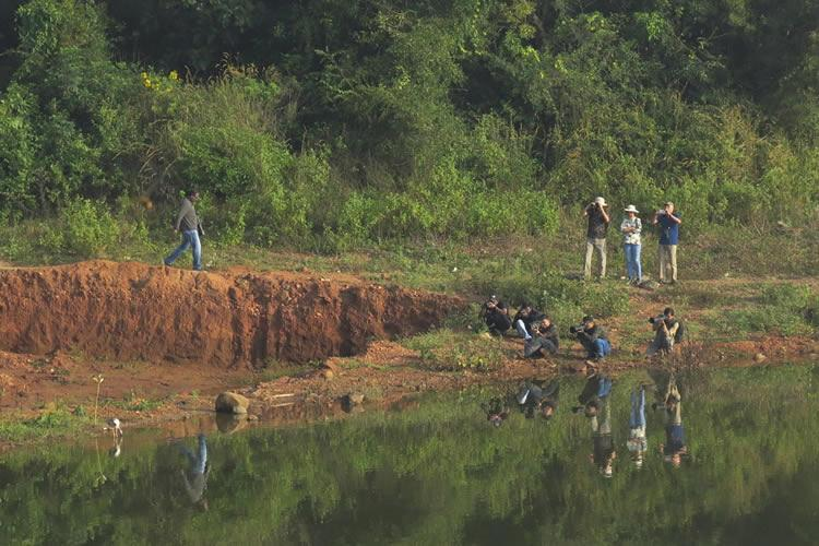Meet Bengalurus vibrant community of birdwatchers