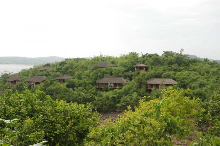 Cottages tucked amidst greenery in River Tern Lodge resort in Bhadra Wildlife Sanctuary The Bhadra river can be seen in the back