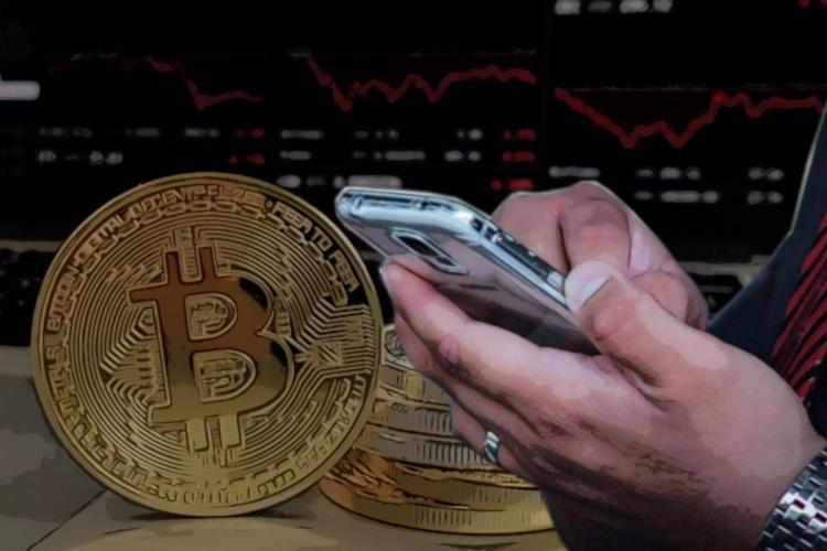 New entrants to the market were particularly affected in the recent crypto market crash