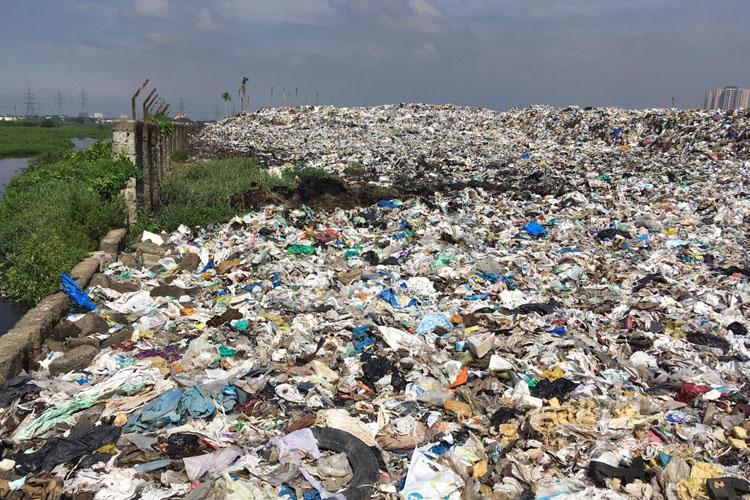 NGT slams Kerala govt for lack of meaningful action to manage solid waste