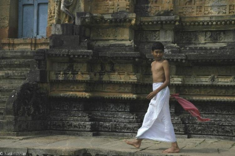 Surgery successful patient dead 20 SC verdict on temple priests under sharp criticism