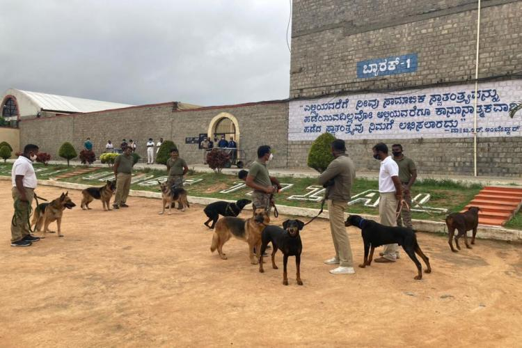 CCB officials at Parappana Agrahara jail with police dogs while conducting a raid of the inmates' cell