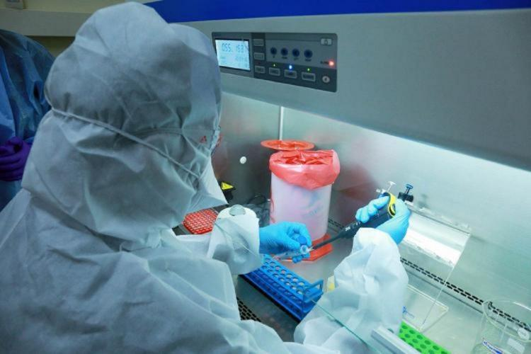 A medical professional dressed in PPE kit handling test sample