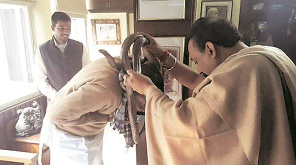 Photographs of Bihar IT minister holding snake goes viral Grand Alliance expresses disapproval