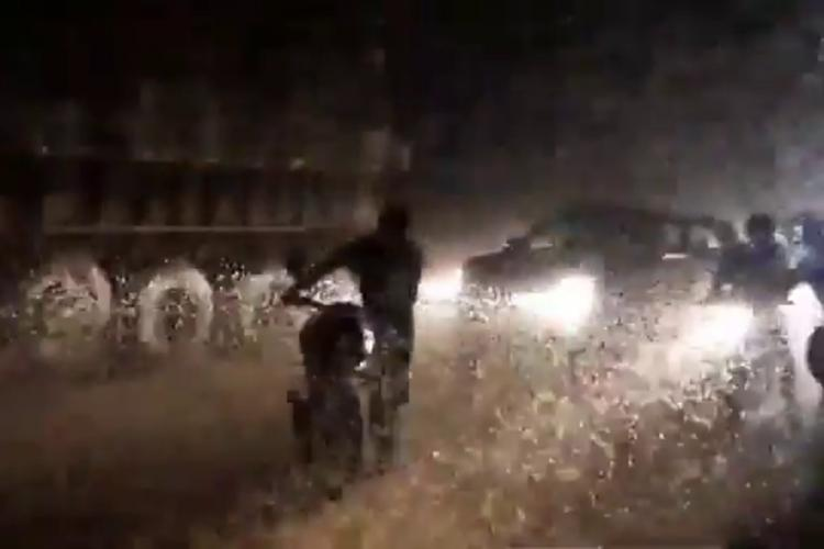 Caddisflies swarm the road as a motorist walks along with the bike, a car and truck are seen in the background