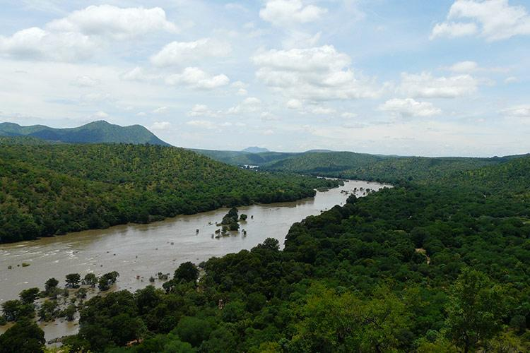 Search on for two Bengaluru techies swept away by Cauvery at Mekedatu