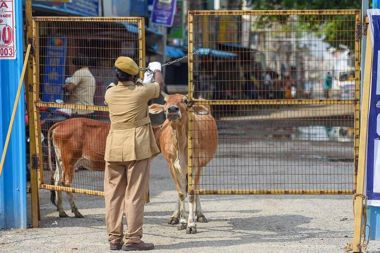 Chennai adds 2182 new COVID-19 cases TN reports 63 new deaths