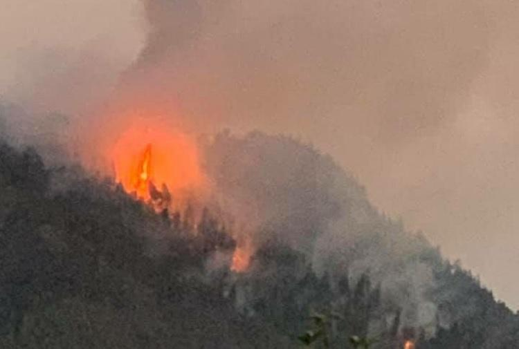 Fire on in Coonoor hill for over 10 days lack of resources affect fire-fighting