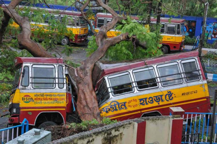 Mangled remains of a bus after a tree fell on it during Cyclone Amphan in Kolkata