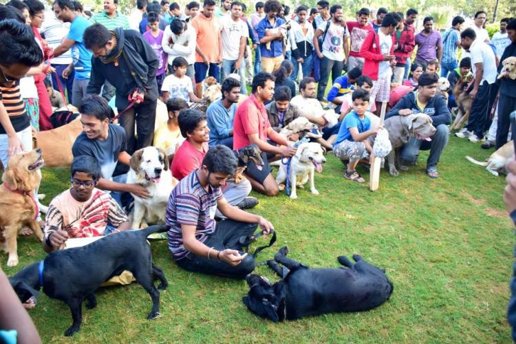 Hyderabads dog paradise A park just for your pets by the Hussain Sagar lake