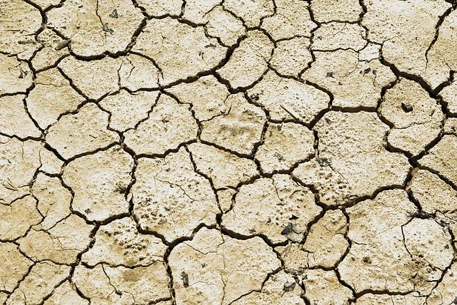 Farmers told to go for alternate crops as AP faces deficit rainfall