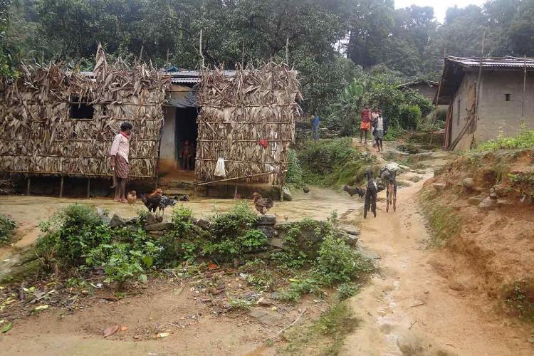Tribal settlement in Edamalakkudy, Kerala