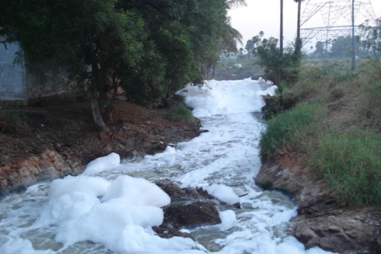 Ground report Hyderabads pharma boom leaves this village with toxic water burning soil