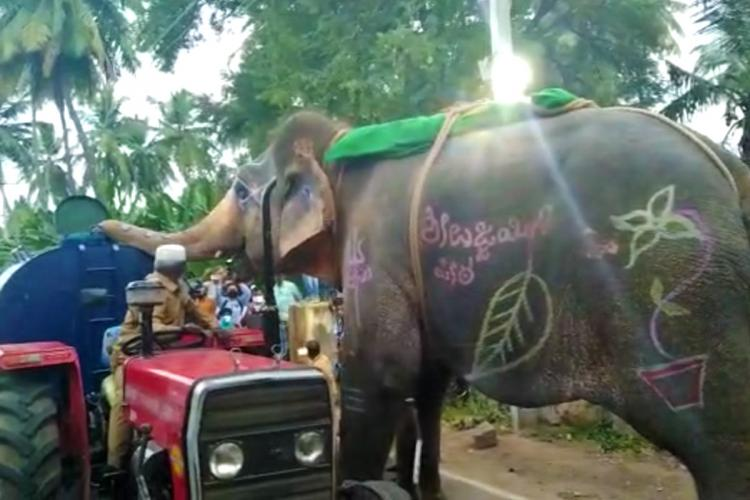 Video of Elephant in Karnataka Drinking Water from Tanker Goes Viral