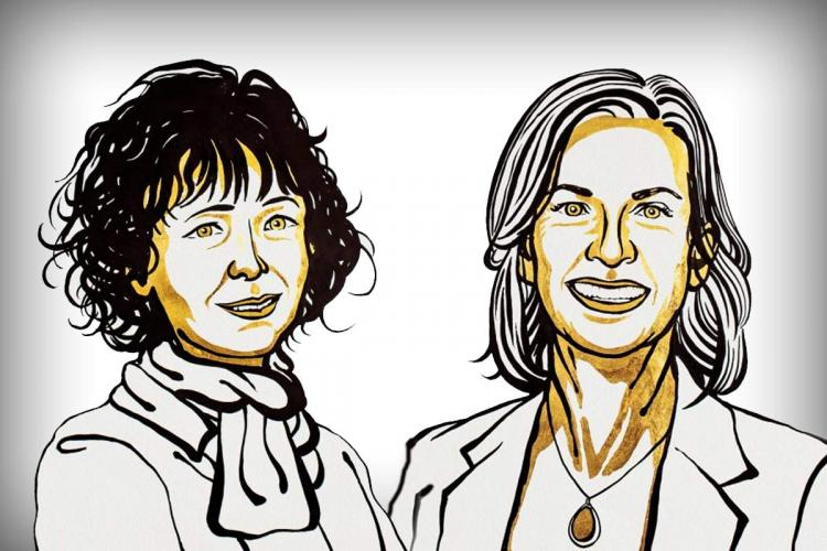 Caricature of Nobel Prize winners for Chemistry Emmanuelle Charpentier on the left and Jennifer A Doudna on the right