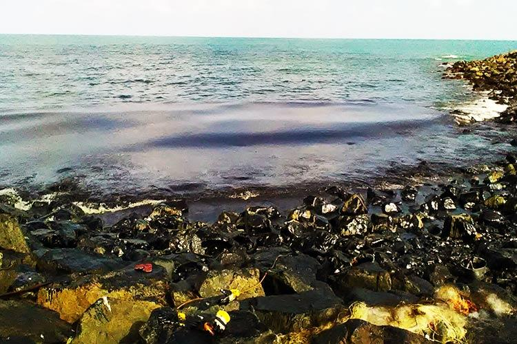 Exclusive How Chennais Ennore Port failed to act immediately after the oil spill