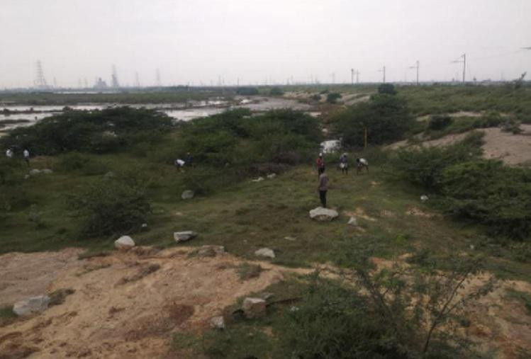 TNs Kamarajar port polluted Ennore region to pay fine and plant trees