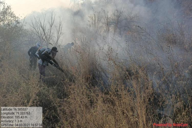 Fire personnel trying to put out forest fire in Telanganas Amrabad Tiger reserve