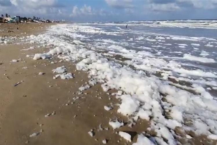 Video Froth washes onto Chennai shore TNPCB blames agricultural activity